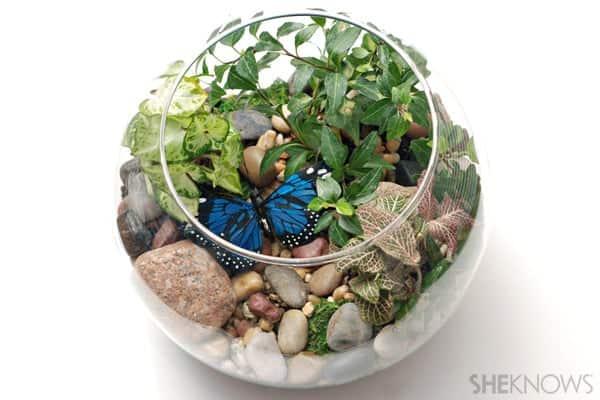 Evinize Yeşili Katacak 17 Terrarium Fikri (16)
