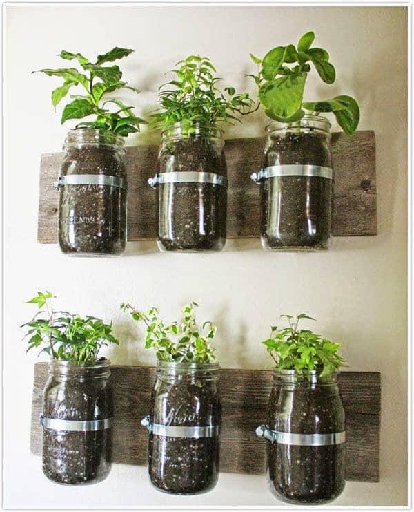 İç Mekanlar İçin 25 Farklı Bitki Sergileme Fikirleri (1)