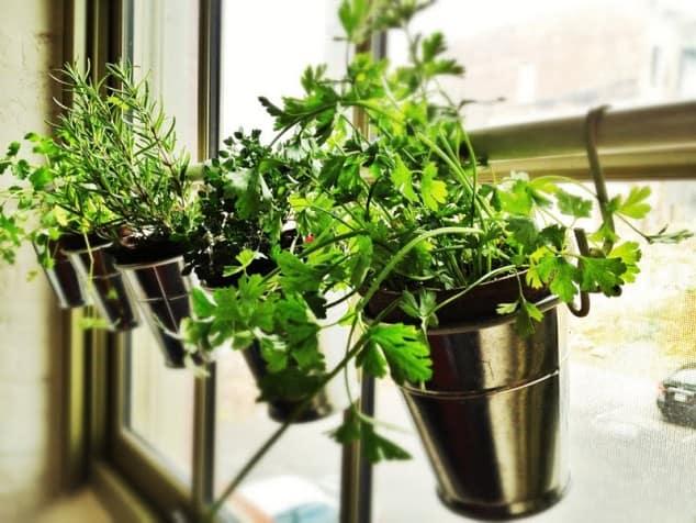 İç Mekanlar İçin 25 Farklı Bitki Sergileme Fikirleri (16)