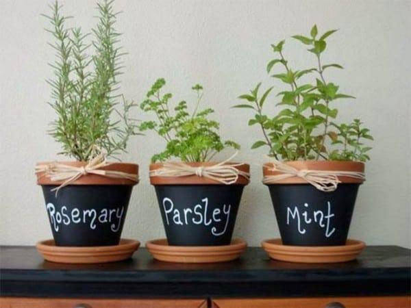 İç Mekanlar İçin 25 Farklı Bitki Sergileme Fikirleri (5)