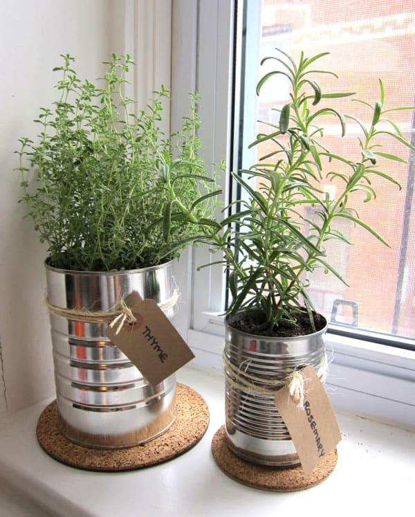 İç Mekanlar İçin 25 Farklı Bitki Sergileme Fikirleri (12)