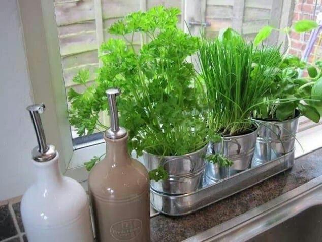 İç Mekanlar İçin 25 Farklı Bitki Sergileme Fikirleri (15)
