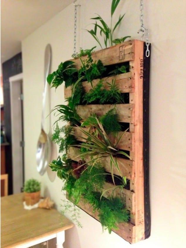 İç Mekanlar İçin 25 Farklı Bitki Sergileme Fikirleri (17)