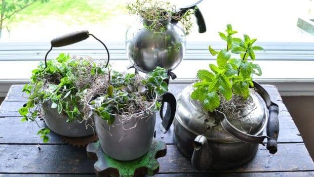 İç Mekanlar İçin 25 Farklı Bitki Sergileme Fikirleri (19)