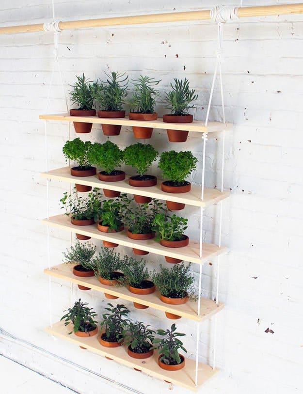 İç Mekanlar İçin 25 Farklı Bitki Sergileme Fikirleri (20)
