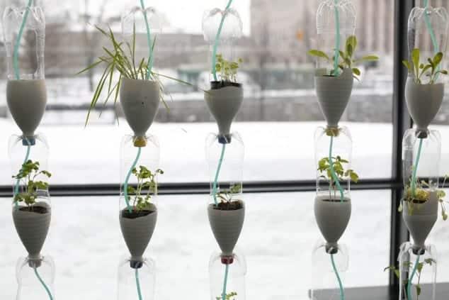 İç Mekanlar İçin 25 Farklı Bitki Sergileme Fikirleri (25)