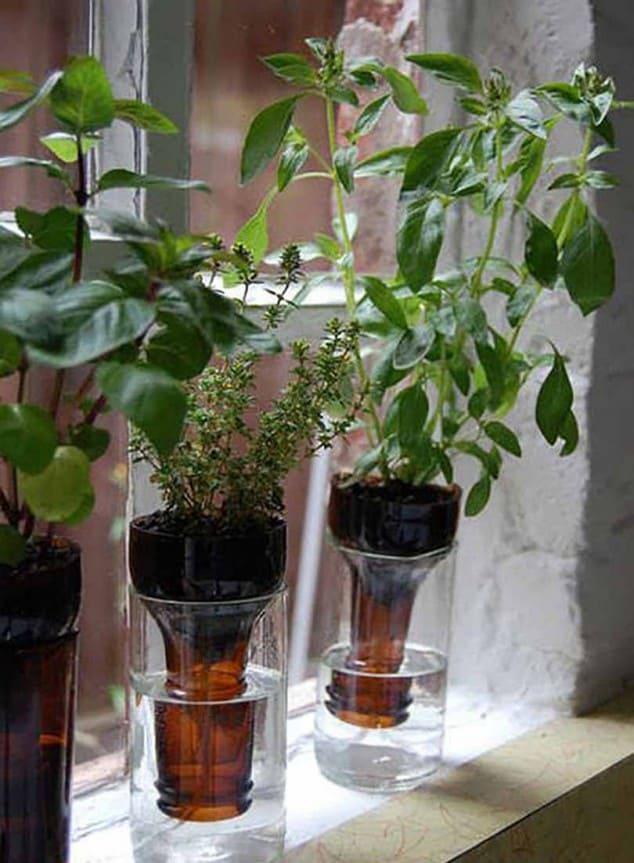 İç Mekanlar İçin 25 Farklı Bitki Sergileme Fikirleri (7)