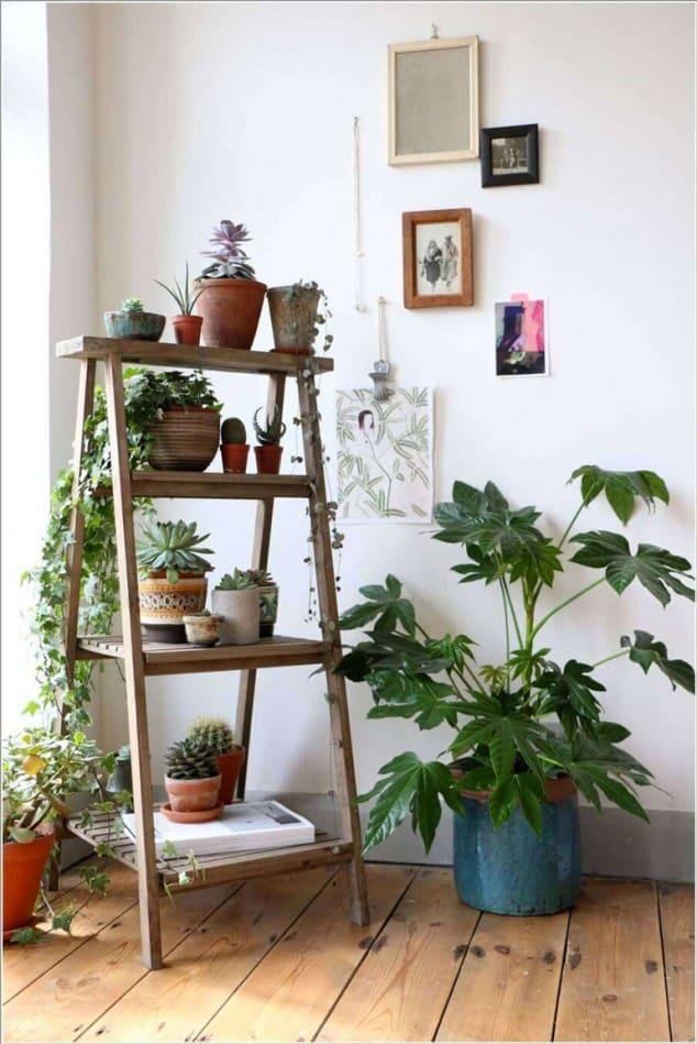 İç Mekanlar İçin 25 Farklı Bitki Sergileme Fikirleri (8)