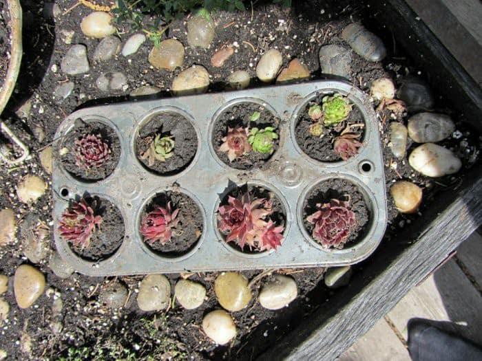 Eski Mutfak Gereçleri İle 40 Geri Dönüşüm Fikirleri (26)